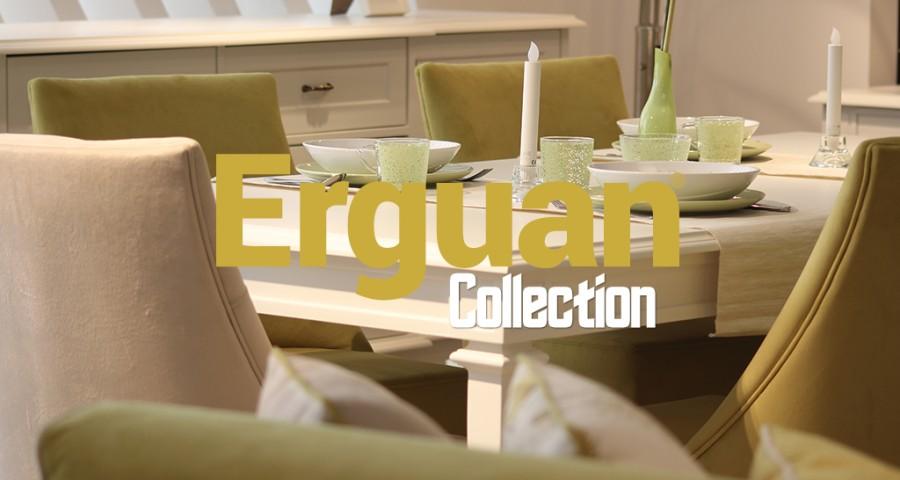 Erguan Collection